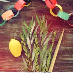 חגים ואתגרים/ הכנה לחג הסוכות